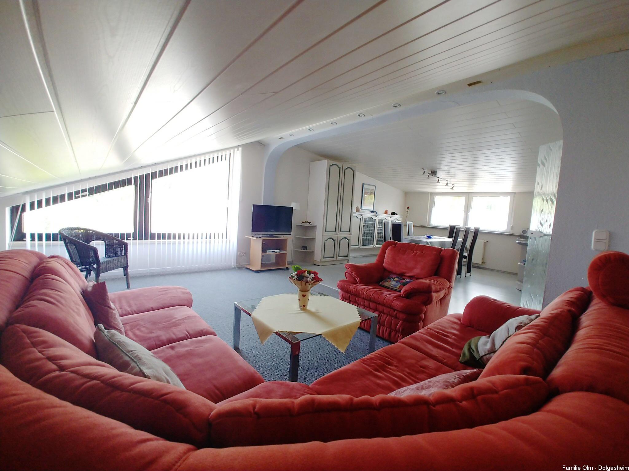 Ferienwohnung Dolgesheim Wohnzimmer